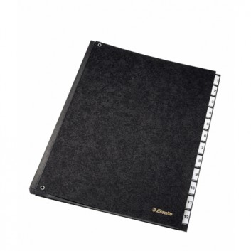 Esselte Pultordner 1-12; schwarz; für DIN A4; Hartpappe; 12 Unterteilungen; mit 12 überstehenden Kunststoff-Taben; auswechelbare Einsteckschildchen